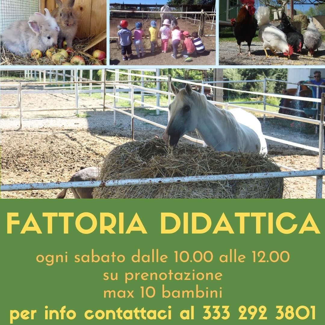 Fattoria didattica a Perugia